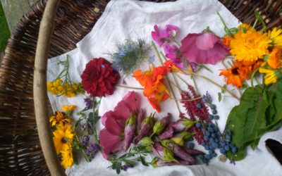 Eco-rituel d'été : les couleurs de mon âme